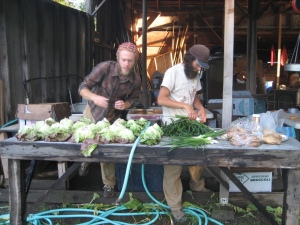 Jon & Josh washing veggies for market