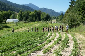 A nice view of our potato patch in the foreground, the tour and the farm.