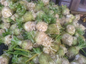 Celeriac for the CSA!