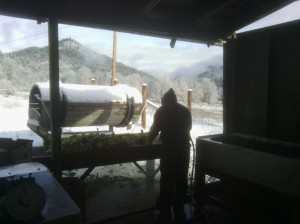 Gregorio washing veggies in the snow!