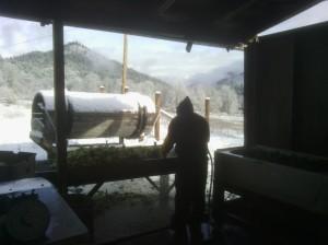 Gregorio washing veggies in the snow!